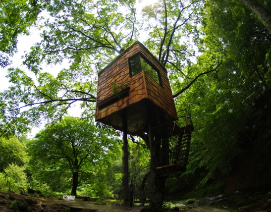 Tree Houses by Takashi Kobayashi